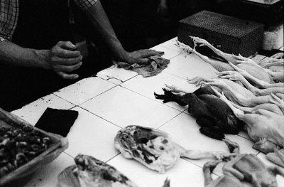 A white tile counter, dark hands holding a wipe and dressed out chicken combine in this photo from a market in Shanghai. Neatly lined up, a black chicken lies between the white ones and their legs seem to point like fingers at the man selling them.